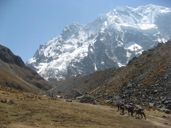 Apus Peru Salkantay treks feature breathtaking natural scenery