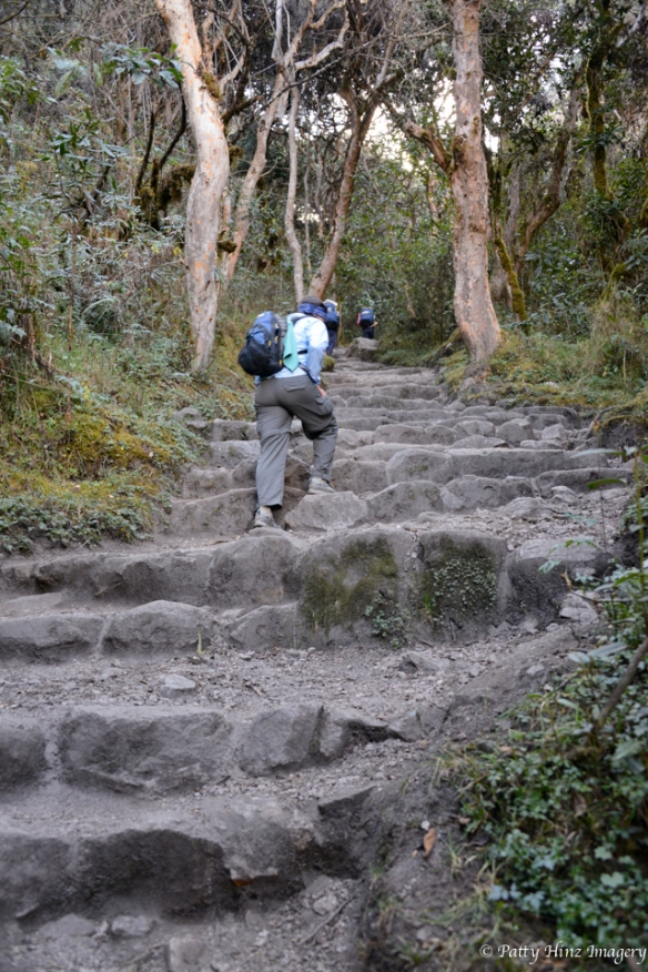There are a LOT of steps on the Inca trail!!!Photo courtesy of Patty Hinz.