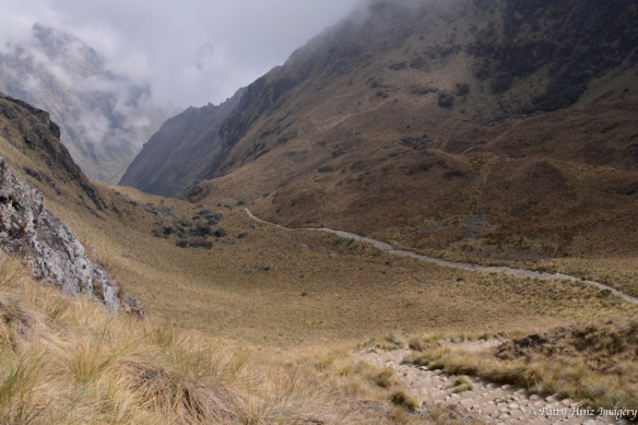 The climb up to the Warmi Huanusca Pass. (4215m) Photo courtesy of Patty Hinz.