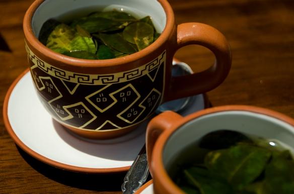 Coca tea assists with acclimatization. Photo courtesy of Michael Mossop.