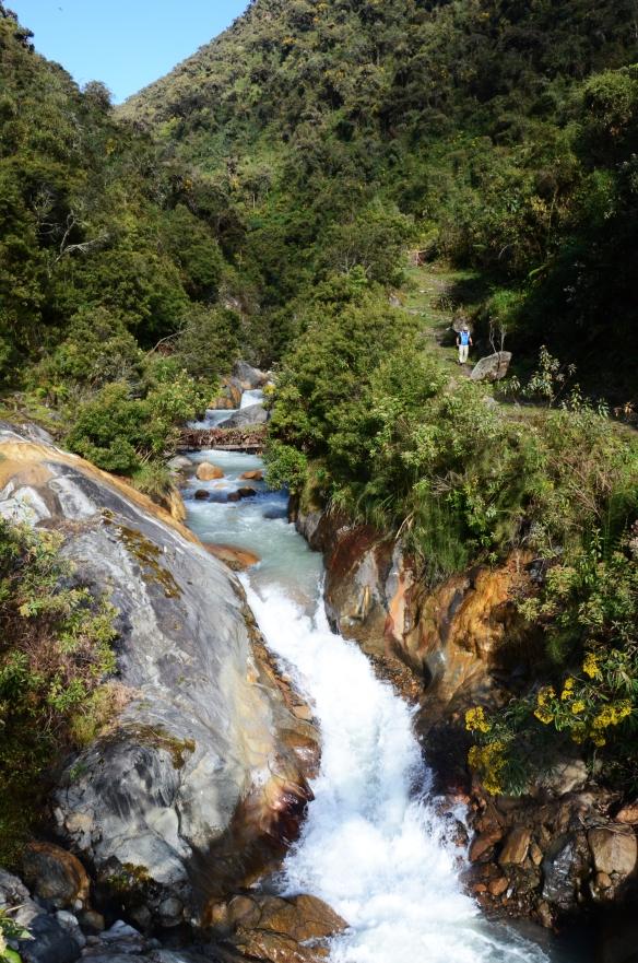 Lush jungle waterfall