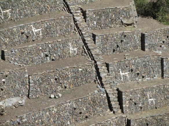 llama wall