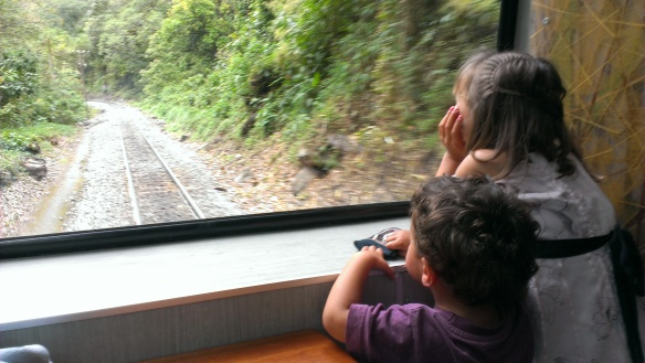 3_We loved train trip Our Family Visit to Machu Picchu, Machu Picchu with Kids, Family Travel to Machu Picchu, Family holiday in Peru,