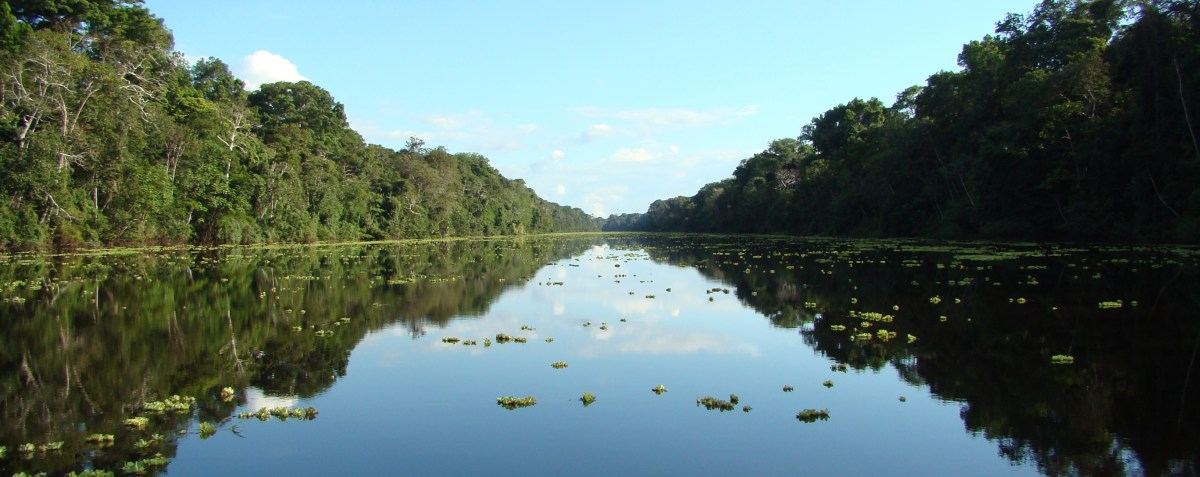 The best way to visit the Peruvian Amazon